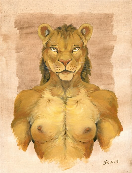 African portraits - Lioness